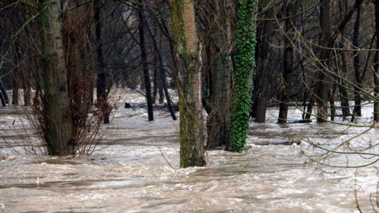 Imatge dels efectes de la crescuda del riu Ter / Foto: ACN