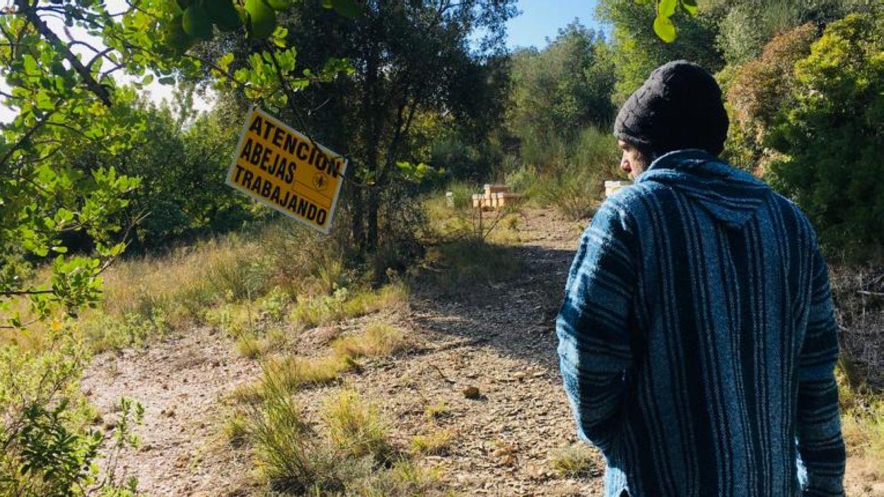 Eric Barbero, en un dels assentaments d'abelles / Foto: Cedida