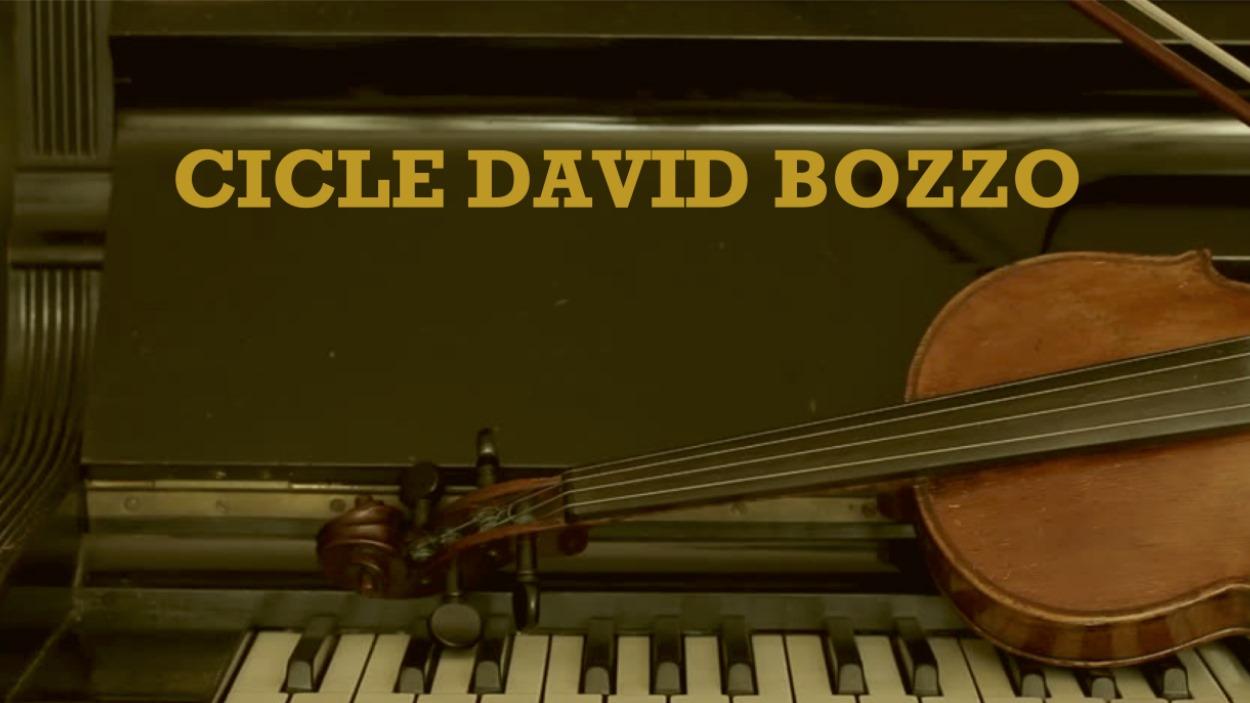 Concert: 9è Cicle David Bozzo