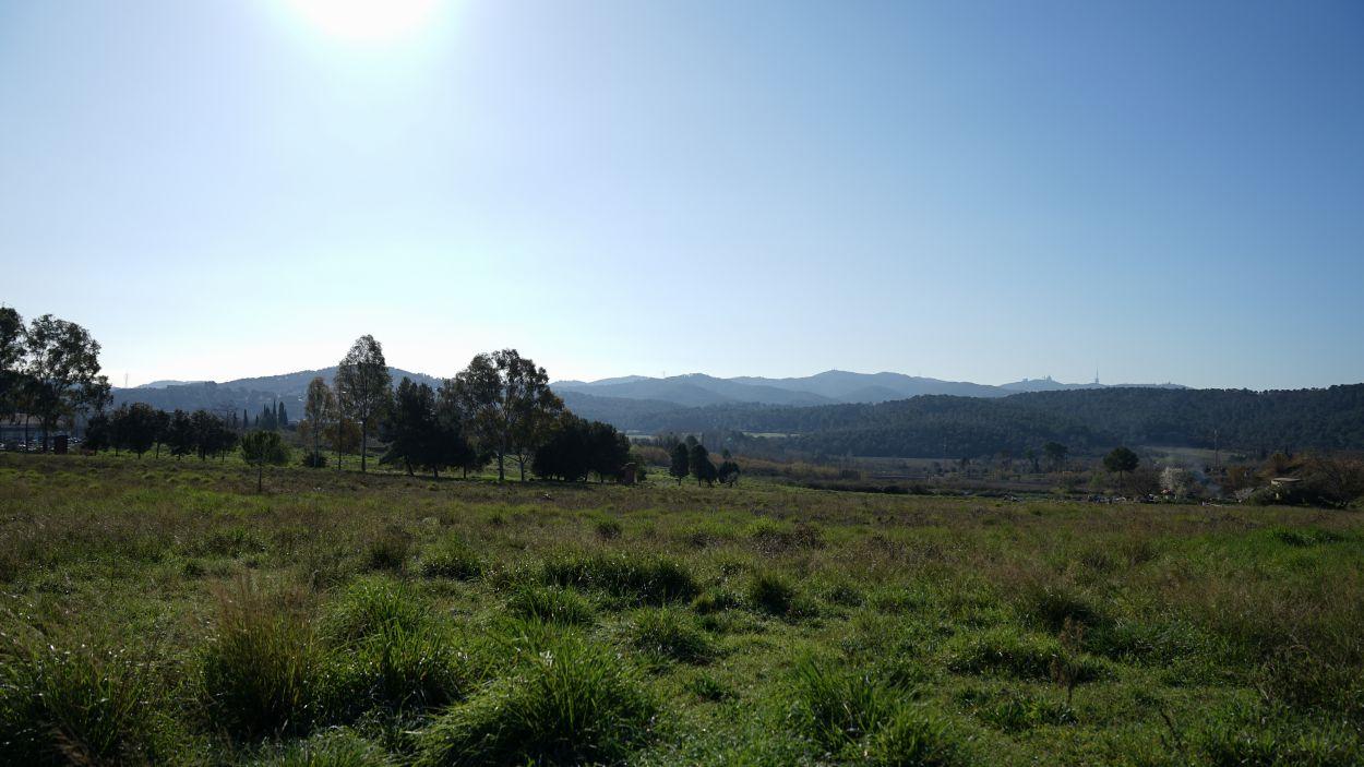 El Centre Direccional de Cerdanyola ocuparà uns terrenys entre la ciutat veïna i Sant Cugat / Foto: Guillem Babitsch (Cugat Mèdia)