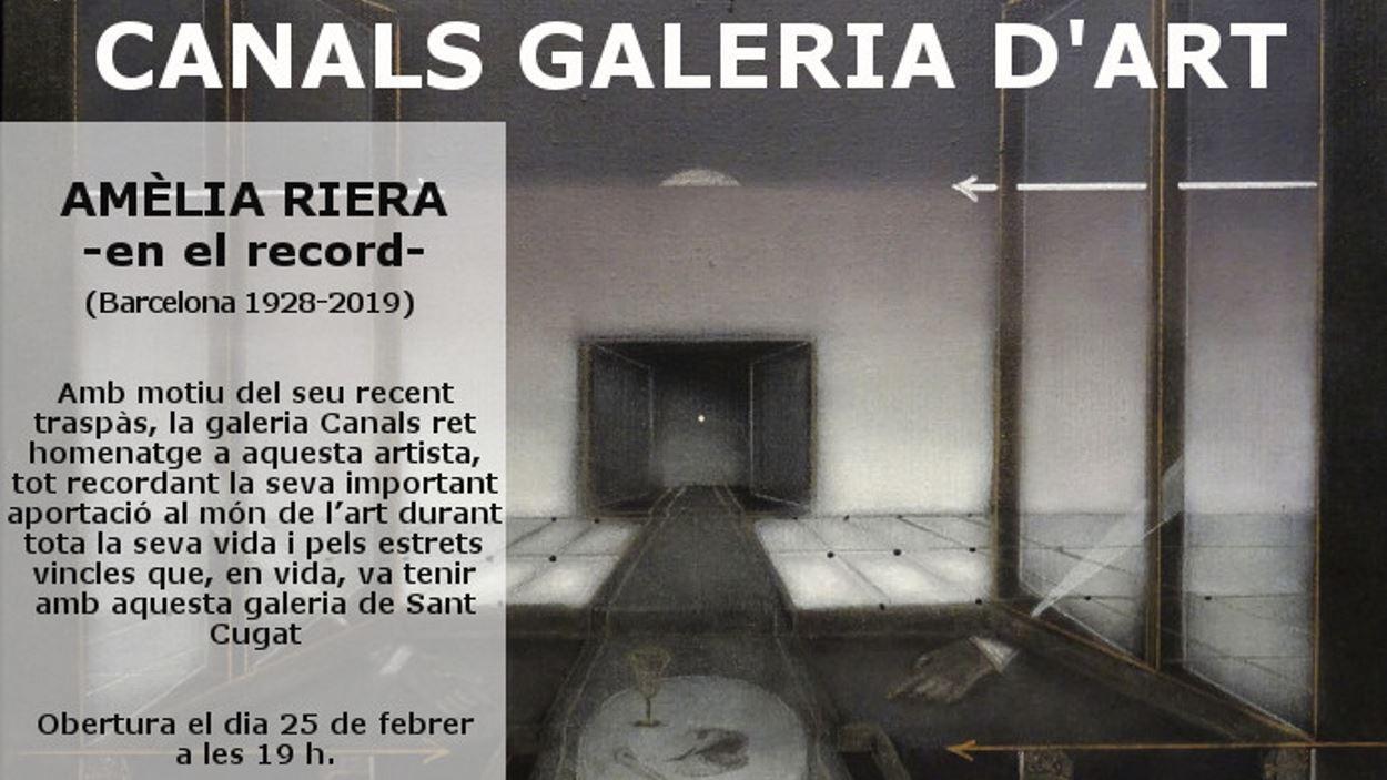Exposició: Amèlia Riera