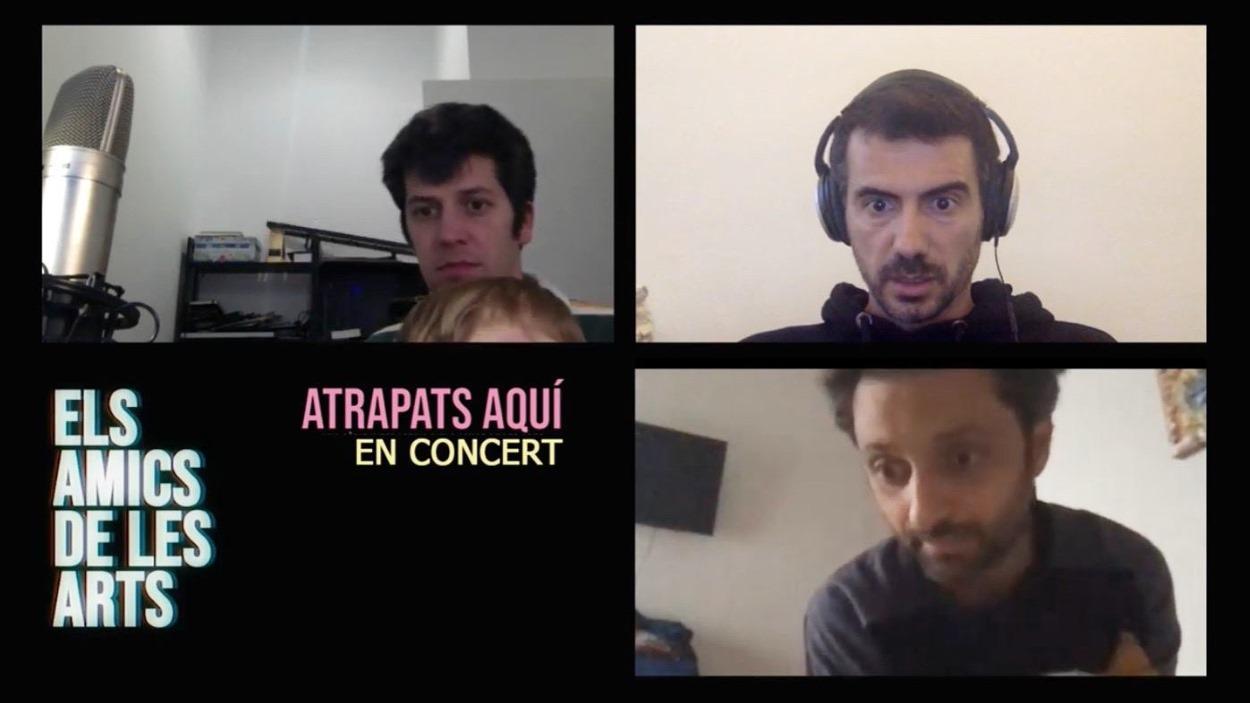 Concert: Els Amics de les Arts