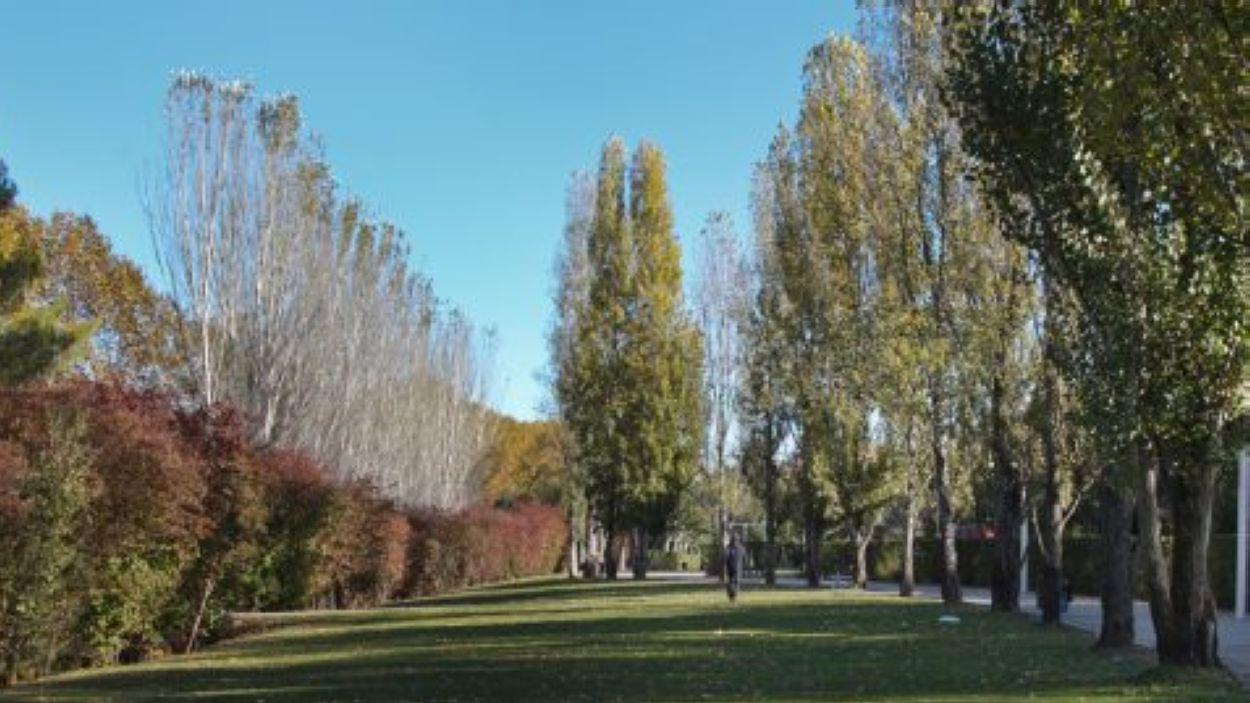 Es reprèn el servei de manteniment de parc i jardins