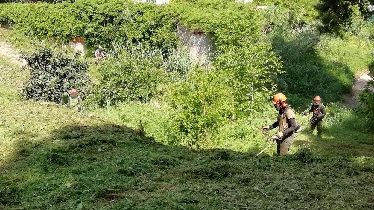 L'equip de treball realitzant la protecció de les franges contra incendis l'any passat / Foto: EMD