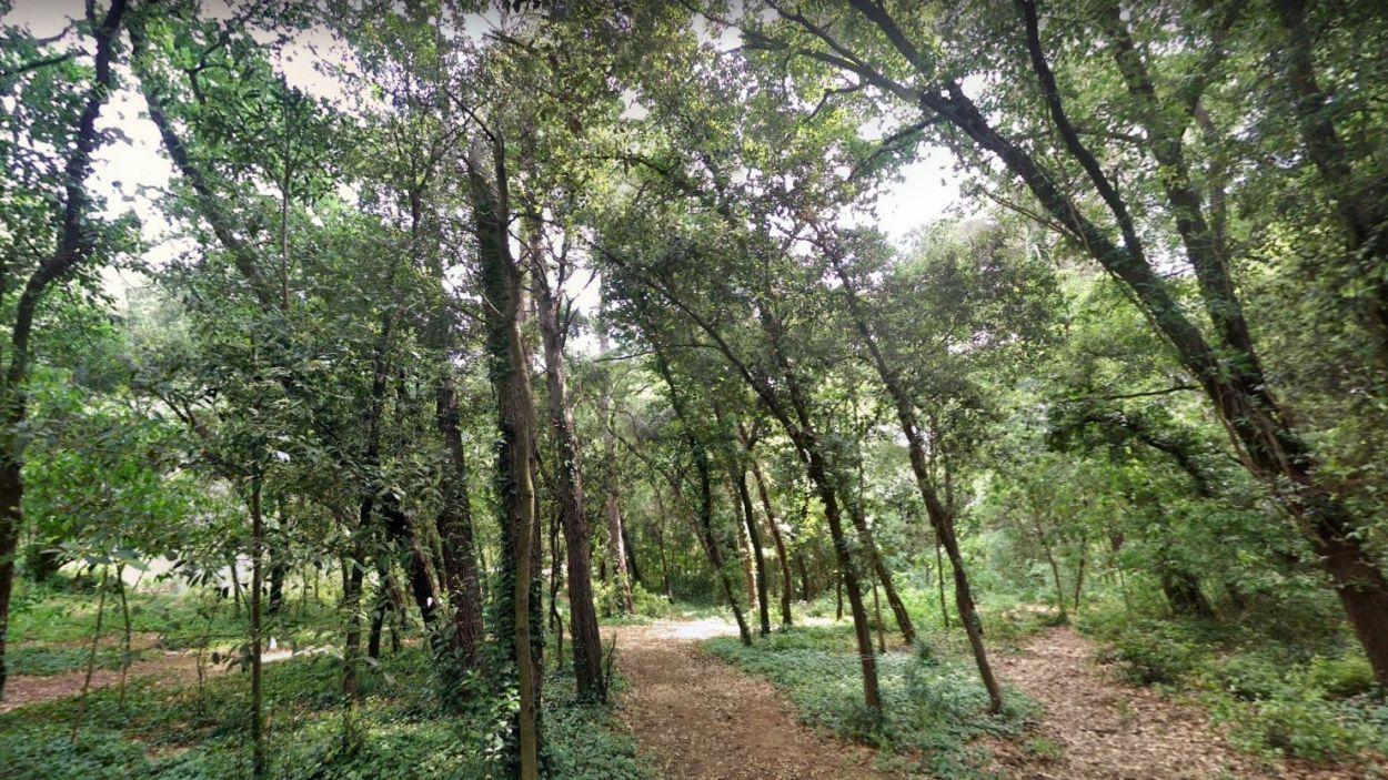 La plataforma ecologista ADENC està disposada a fer el que calgui per salvar el Bosc de Volpelleres / Foto: Google Maps