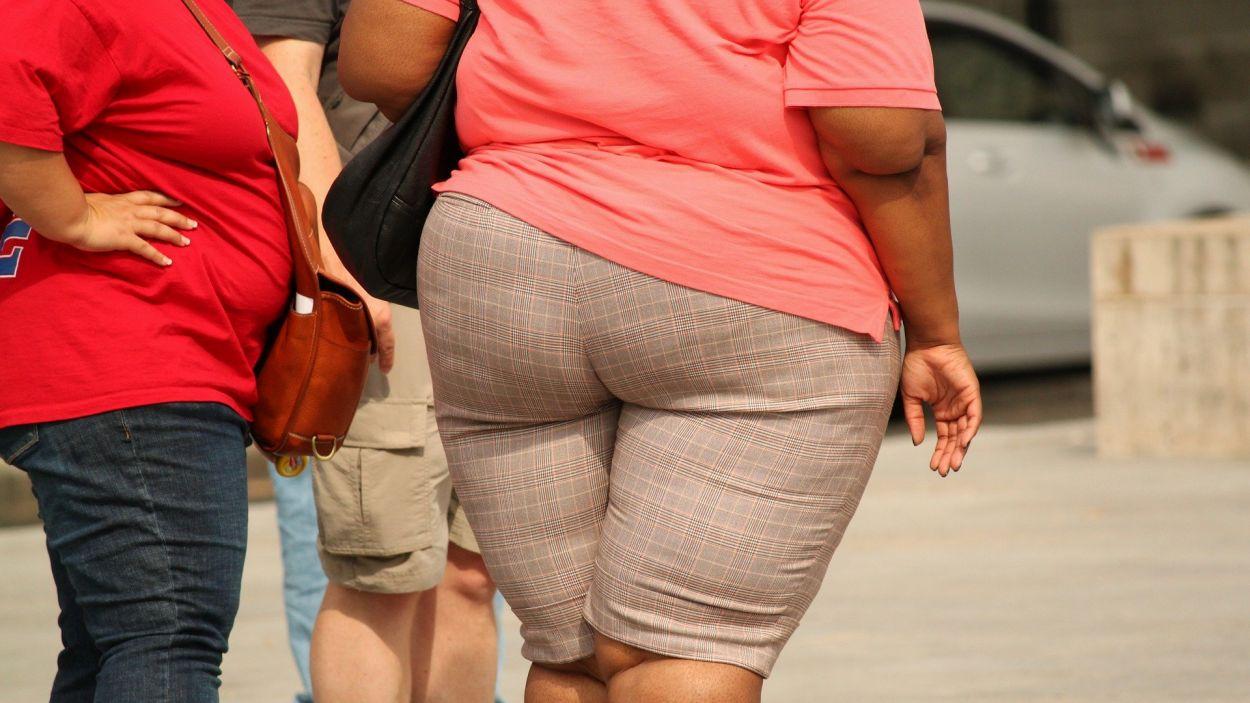 El sobrepès i l'obesitat són factors de risc davant la Covid-19 / Foto: Pixabay