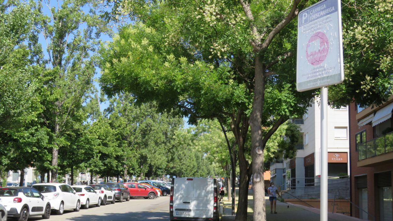 Zona de càrrega i descàrrega al passeig de Francesc Macià