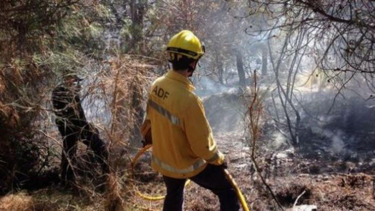L'incendi va ser devastador, va cremar 135 hectàrees / Foto: ADF