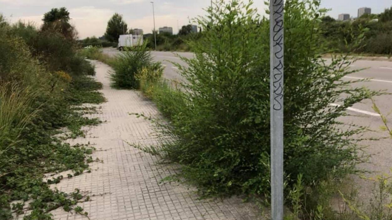Les preguntes a l'alcaldessa estan relacionades amb el mateniment de les voreres / Foto: Cedida (John Forero)