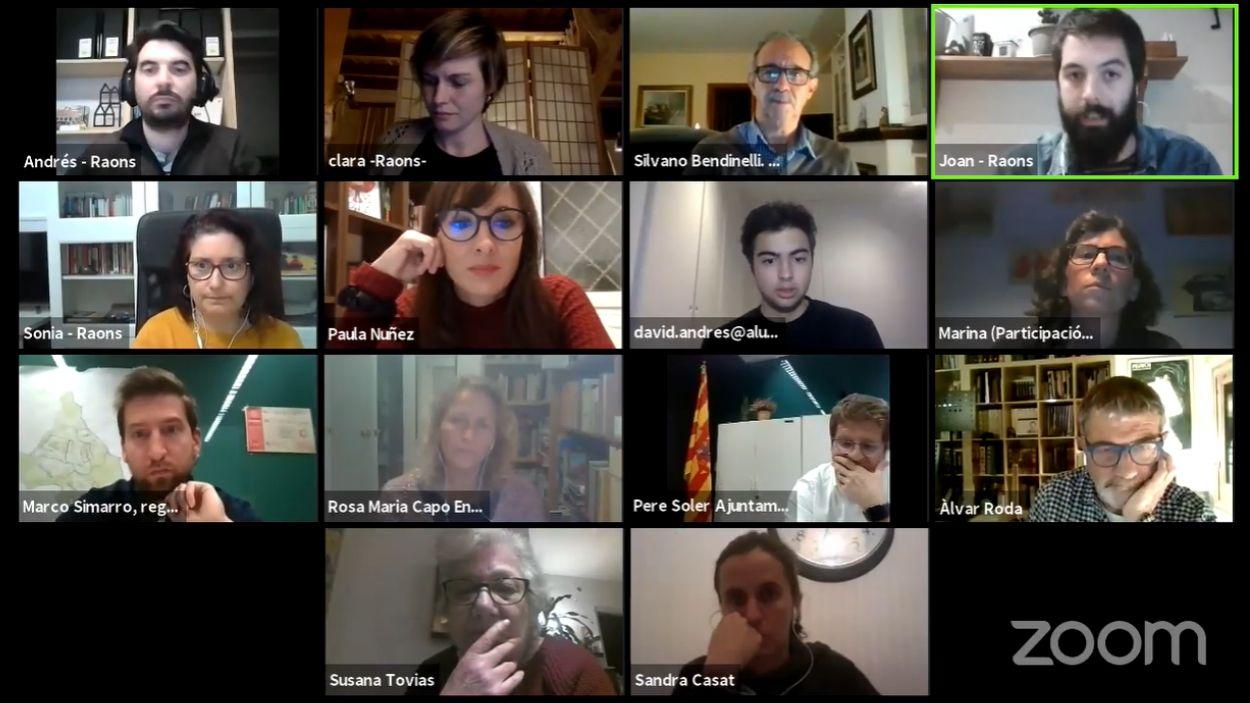 La sessió s'ha celebrat telemàticament / Foto: Captura de pantalla