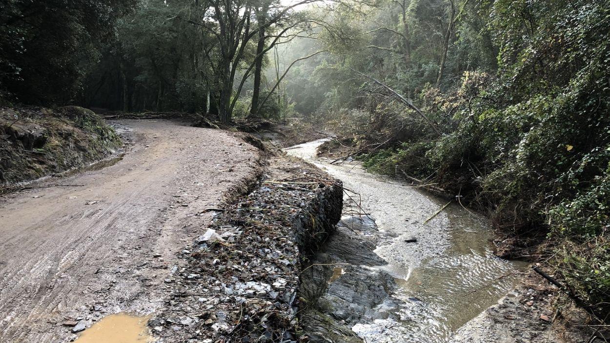 Imatge del camí afectat de l'àrea de lleure de Can Coll a Can Codina / Foto: AMB
