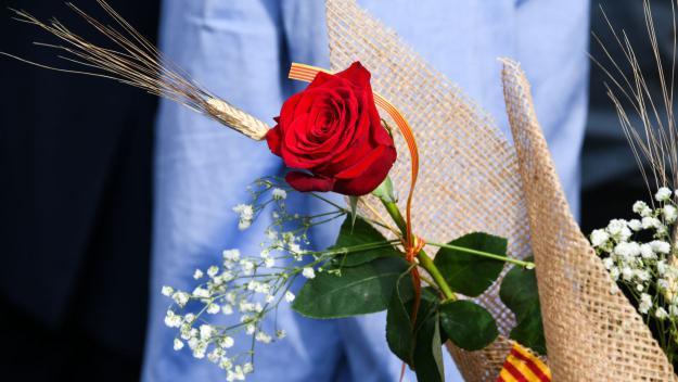 Descobreix totes les activitats que pots fer a Sant Cugat per celebrar Sant Jordi
