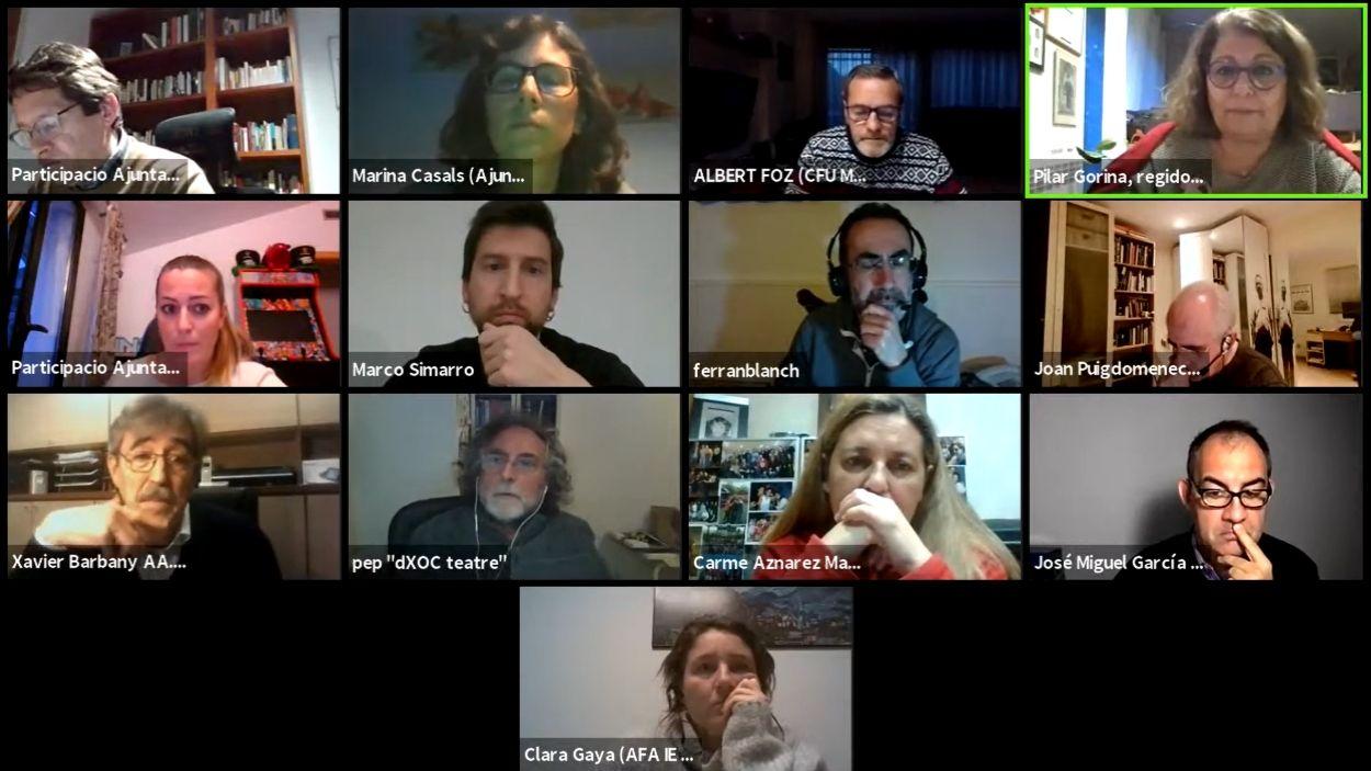 La sessió s'ha desenvolupat de manera telemàtica / Foto: Captura