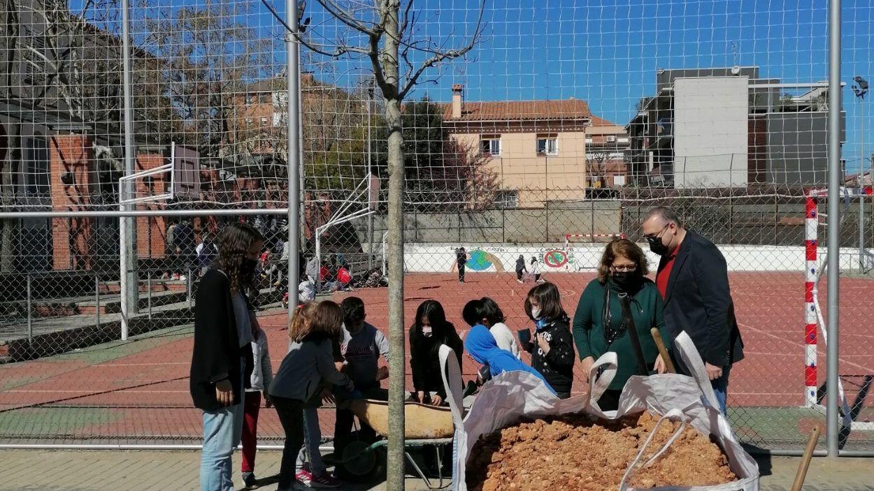 Alumnes de l'escola Joan Maragall participen a la plantació d'arbres / Foto: Ajuntament