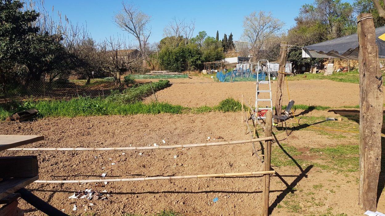 Imatge dels horts de la zona / Foto: Cedida pels horticultors