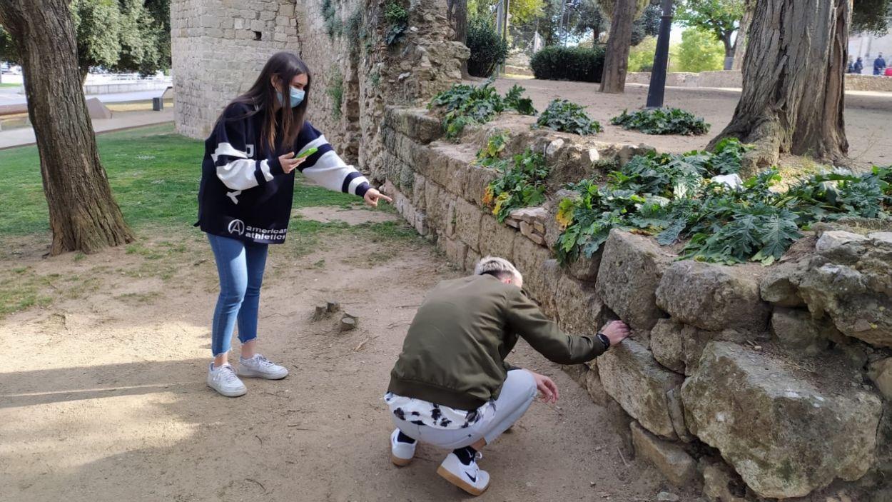 Dos joves a punt de trobar un catxé als voltants del Monestir / Foto: Cugat Mèdia
