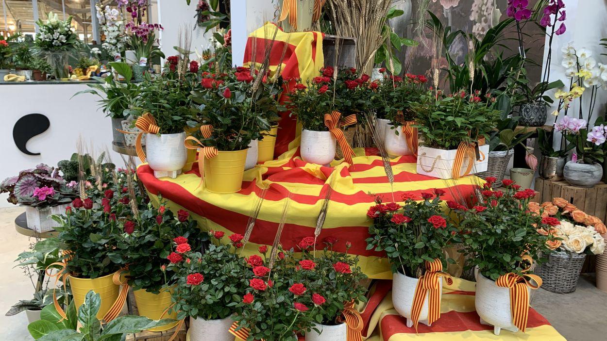 Roses de Sant Jordi d'Èlia Garden / Foto: Cugat Mèdia