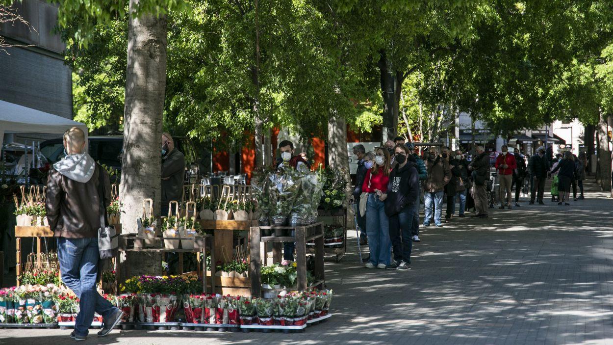 Cua per comprar una rosa a la floristeria Blooms de la Rambla del Celler aquest Sant Jordi / Foto: Lali Puig