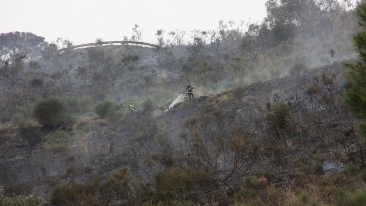 Un incendi de sisena generació és possible a Collserola