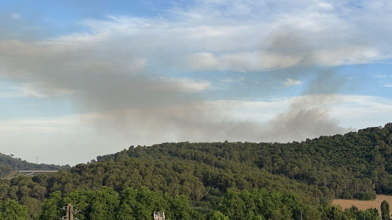 Imatge d'arxiu d'un incendi a Collserola / Foto: ACN