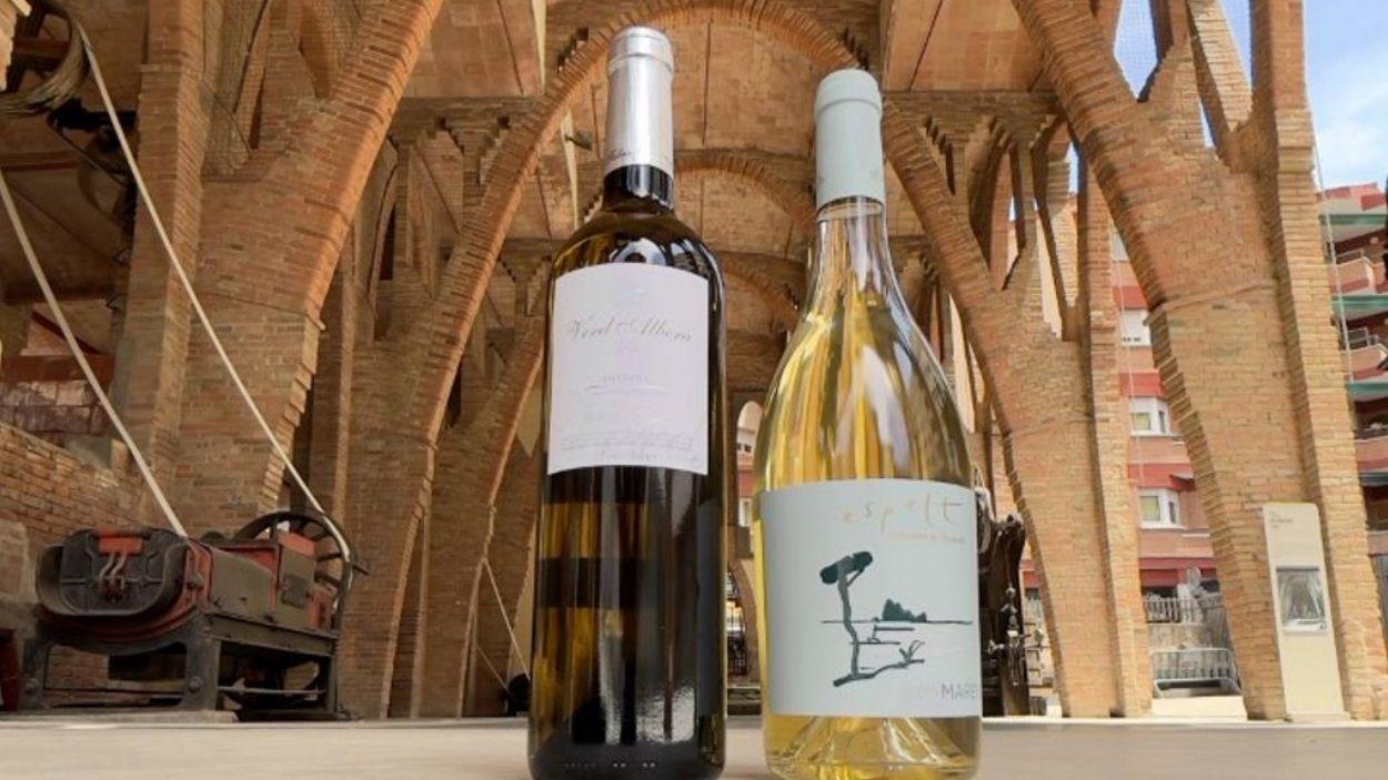 Els vins de l'Empordà arriben a Sant Cugat aquest cap de setmana / Foto: Ajuntament de Sant Cugat