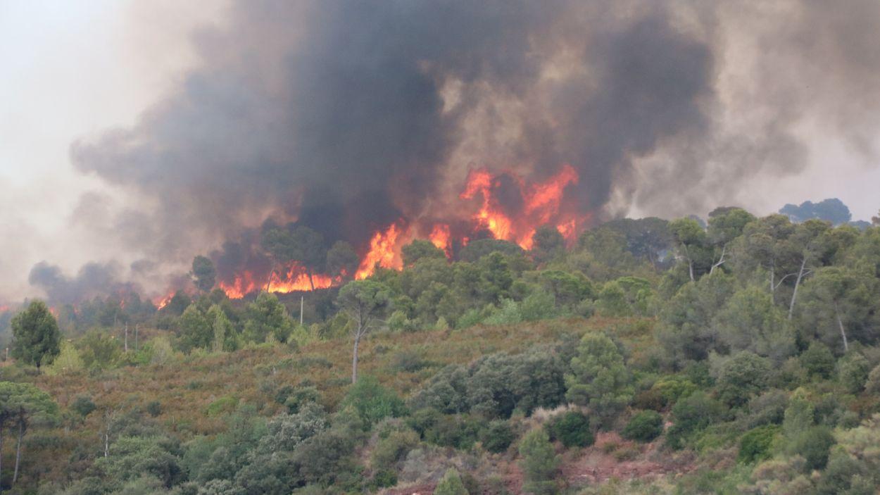 Imatge de l'incendi, el foc del qual ha estat visible des de Sant Cugat / Foto: ACN
