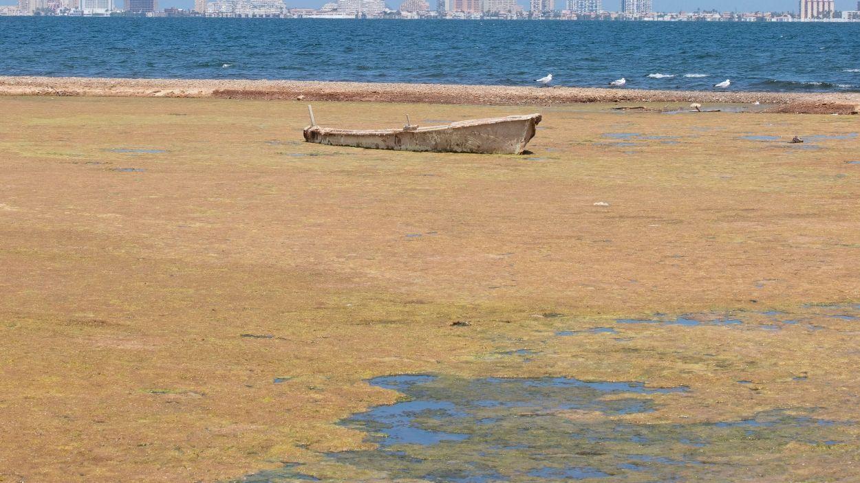 Imatge de la Mar Menor de Múrcia / Foto: ILPMarMenor.org