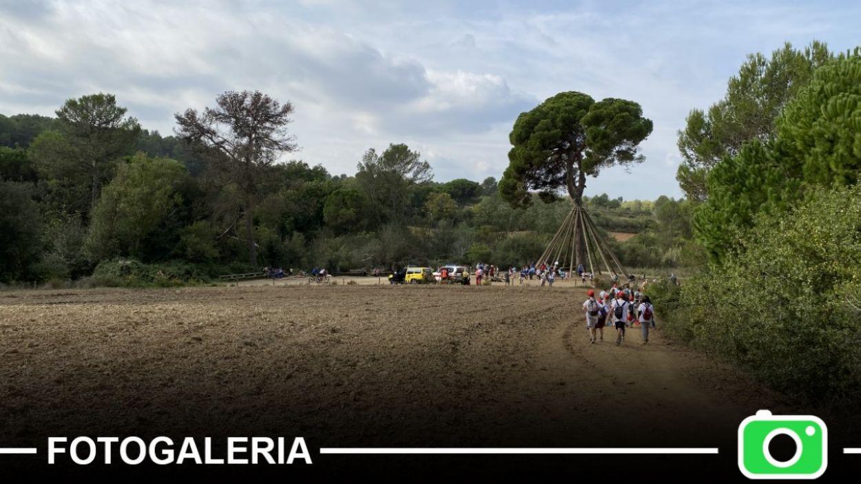 La marxa infantil ha passat pel Pi d'en Xandri / Foto: Cugat Mèdia