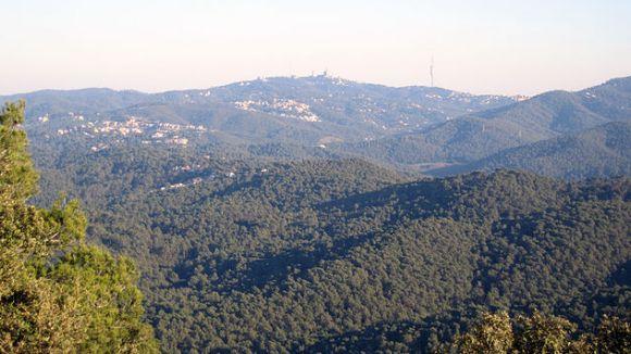 Sant Cugat, en alerta màxima pel risc d'incendi forestal