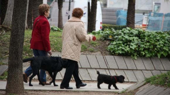 Sant Cugat tindrà dos nous espais de socialització per a gossos