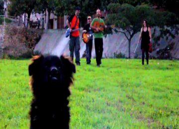 El folk fusió d'A Banda tanca aquest divendres la 4a edició del 'Mou-te'