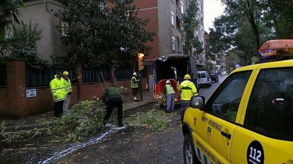 L'episodi de pluja i vent mobilitza els serveis d'emergències locals