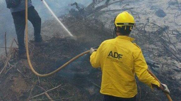 Un incendi crema uns 1.200 metres quadrats de matolls