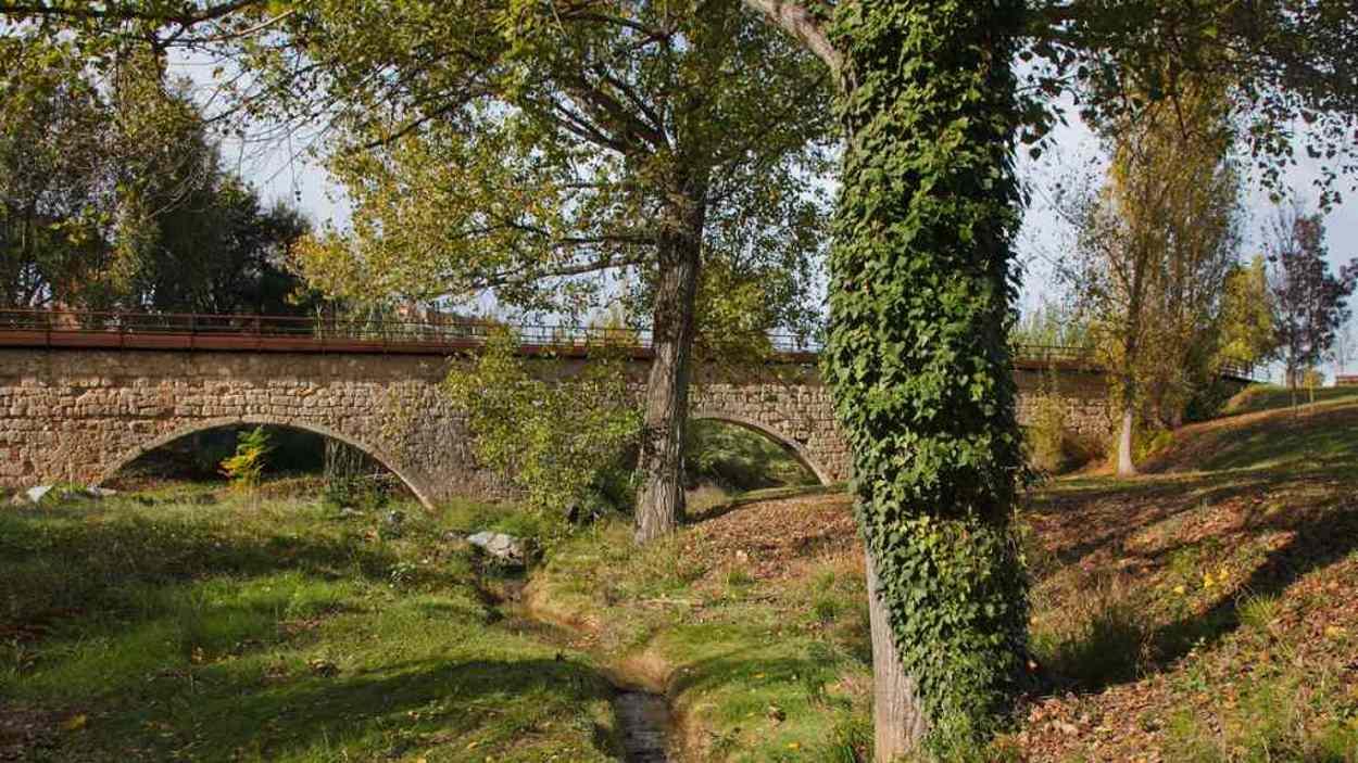 Ruta guiada: 'El parc del Torrent de Ferrussons i el parc del Pont de Can Vernet'