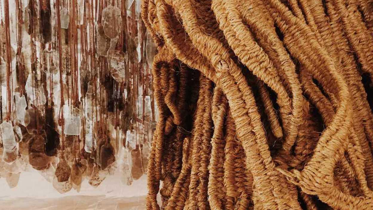 Exposició: 'Col·lecció. Fascicle 1. Introducció General'