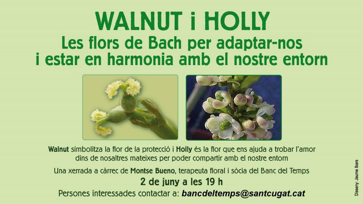 ONLINE - Xerrada sobre les flors de Bach