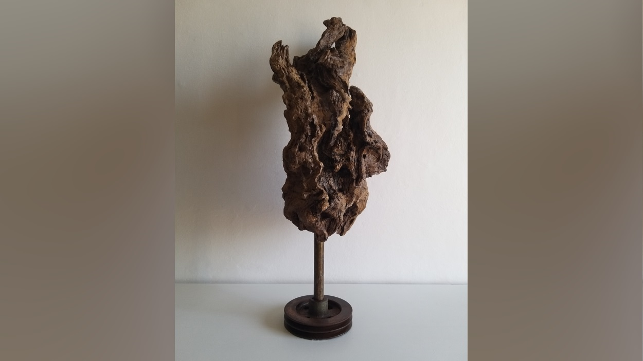Exposició: 'A través dels temperaments. Interpretació del poema de Gabriel Ferrater'