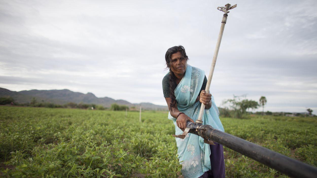 Exposició: 'Salvar la terra per erradicar la pobresa'