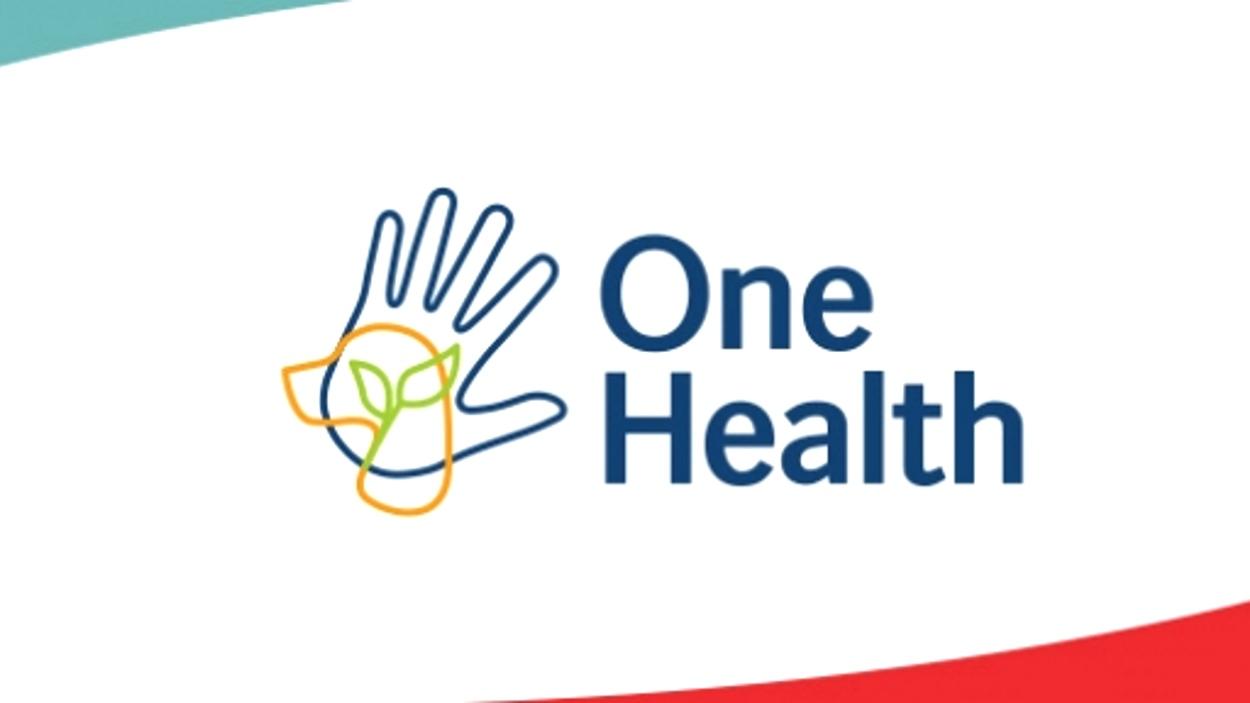 [Online] Jornada Boehringer Ingelheim 'One Health: avanzando hacia un abordaje integral de la salud'