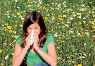 Les al·lèrgies encara no han colpejat Sant Cugat