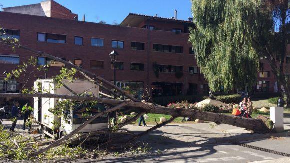 El pas del vent per Sant Cugat deixa diversos arbres caiguts