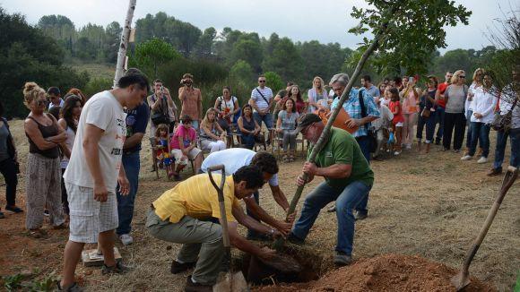 El ioga arrela a Sant Cugat amb la plantació d'un arbre de la pau