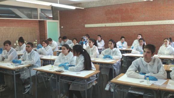 Els alumnes estudien els bacteris presents en mostres de terra de Sant Cugat