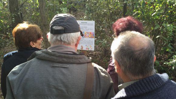 El Bosc Literari omple de contes infantils una de les entrades a Collserola