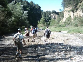 El Consell Comarcal regularà els usos dels camins forestals de la comarca