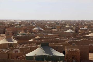 Neus Bosch (SCAPS): 'Els campaments sahrauís sempre han estat molt segurs'