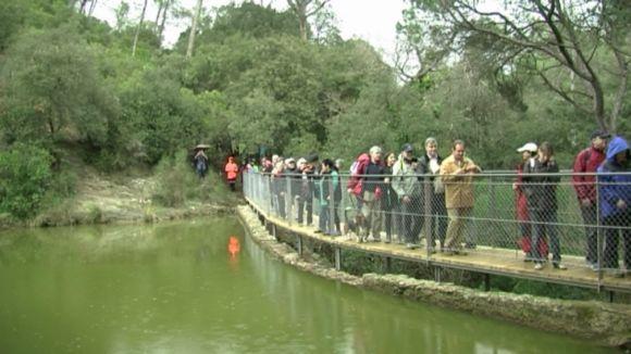 L'Ajuntament preveu buidar el pantà de Can Borrell per dragar fangs i eliminar les espècies invasores