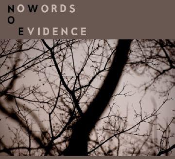 Els santcugatencs No Words No Evidence presenten el seu primer EP