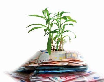 El ple dóna un impuls a la banca ètica