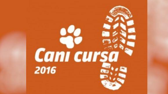 Cartell de la Cani Cursa 2016